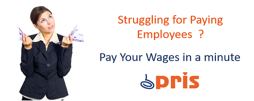 Automate your Payroll with PRIS - Online Payroll Software